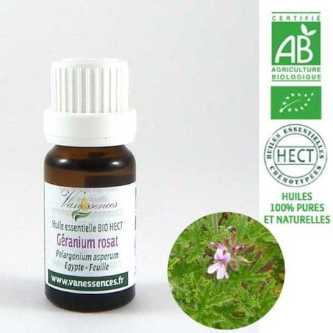 geranium-rosat-pelargonium-asperum-huile-essentielle-bio-hect-