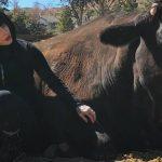 Préserver les animaux avec la mode végan