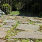 Poser des dalles de jardin sur terre : 4 choses à savoir