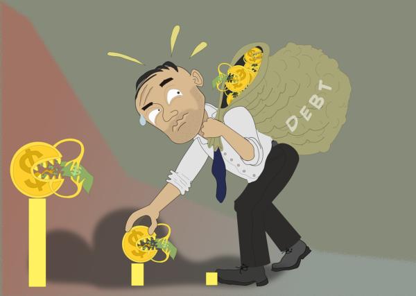 La capacité d'emprunt
